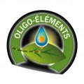 Les oligos éléments et la digestion